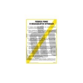 Instrukcja postępowania w przypadku oparzenia kwasem lub ługiem - E04